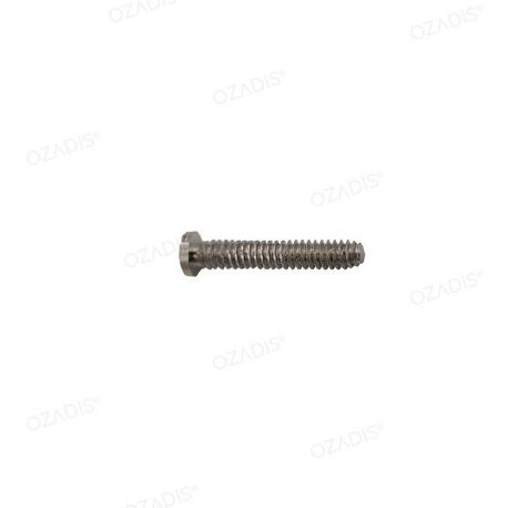 Screws threaded under head - Silver
