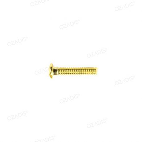 Eyeglass screws - Gold