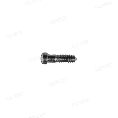 Nose pads screws - Silver