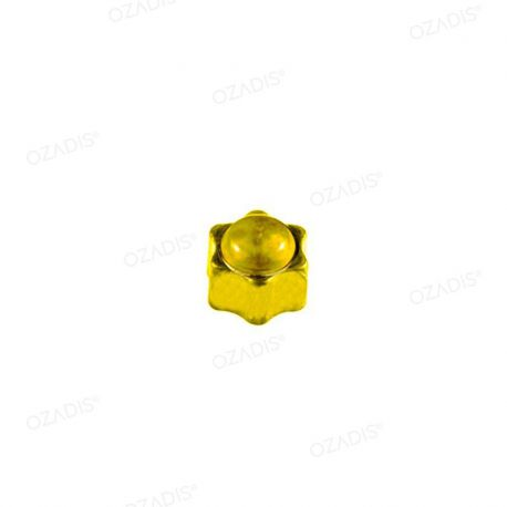 Star cap nuts - Gold