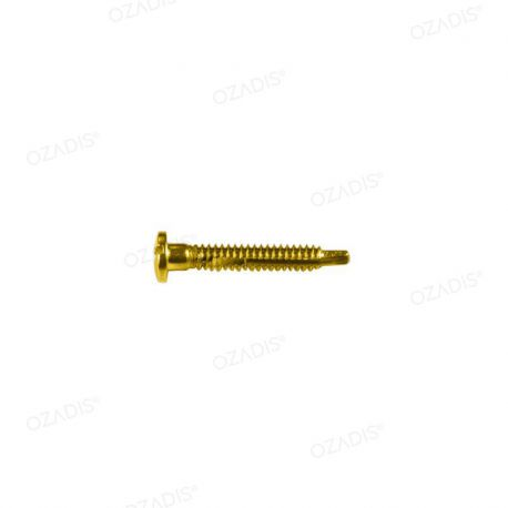 Self tapping screws - Gold