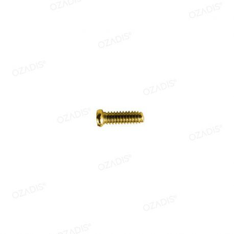 Cross head screws - Gold